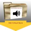 HSE-12 Roof Work